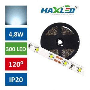 LED trak 2835 4,8W/m 300 LED IP20 hladno bela 6500K 5m